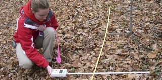 A student making measurements in a natural environment