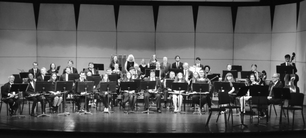 Wind Ensemble photo